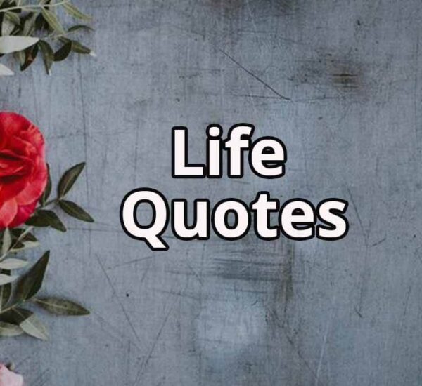 Life Quotes | Life Quotes