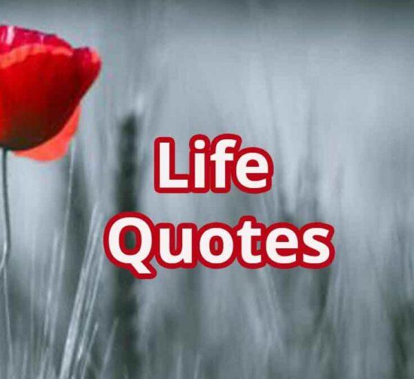 Afsana Zindagi Ka | Life Quotes