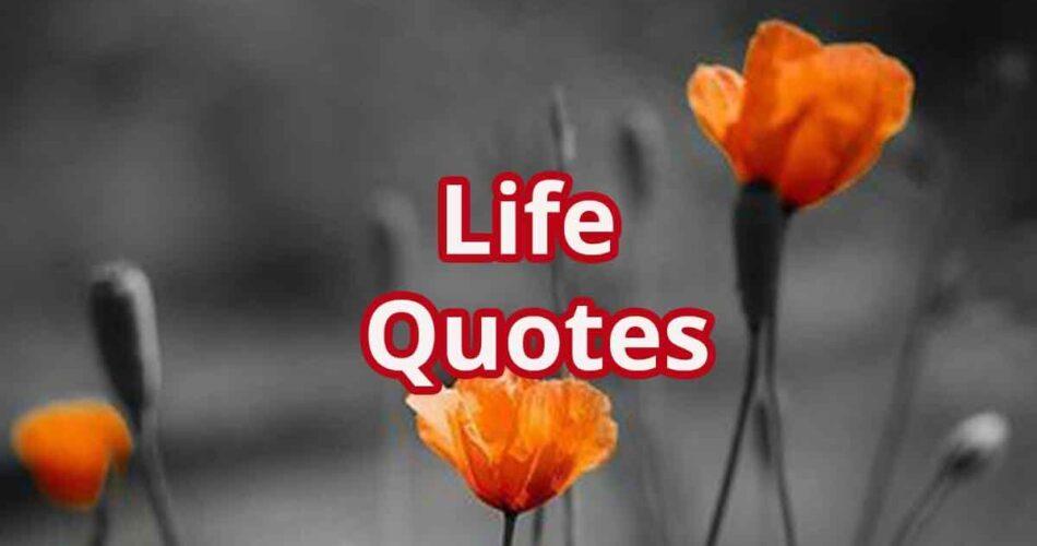 Zindagi Quotes | Life Quotes