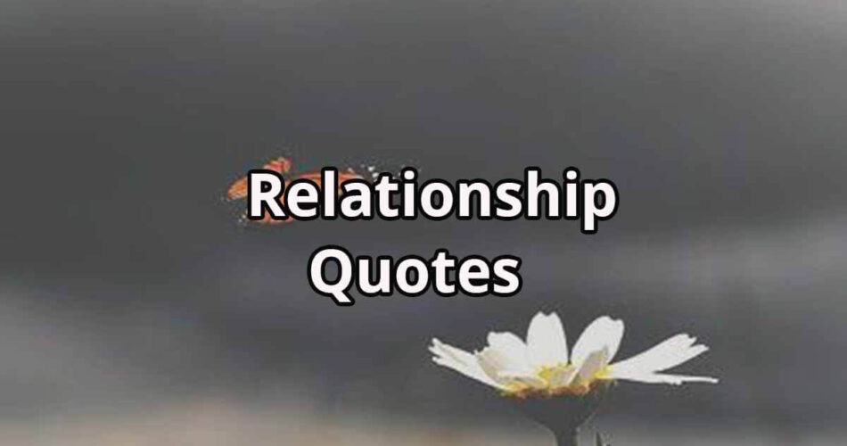 Relationship Quotes | Relationship Quotes